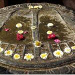 Sur les pas du Bouddha – Livret du pélerinage